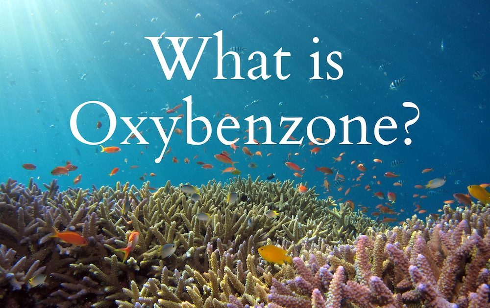 what-is-oxybenzone-banner-image