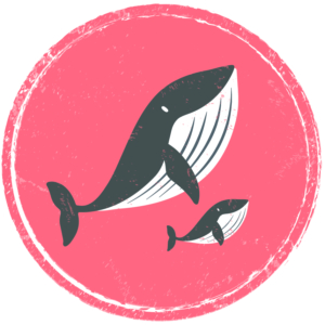 BBB_icon-04